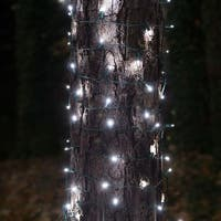 Wintergreen Lighting 71305 100 Bulb 2ft x 6ft LED Decorative Holiday Net Light with Green Wire - Cool White - N/A