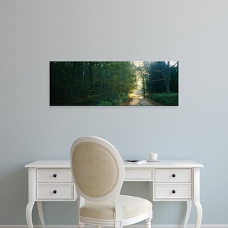 Easy Art Prints Panoramic Images's 'Road passing through a forest, Berkshires, Massachusetts, USA' Premium Canvas Art