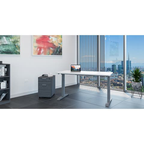 iRize 30x48 Electric Height Adjustable Standing Desk by I5 Industries