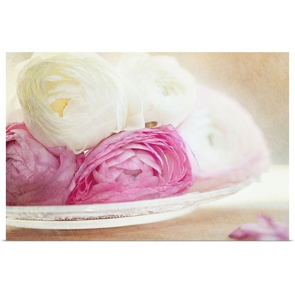 """""""Pink and white ranunculus flowers in glass plate."""" Poster Print"""