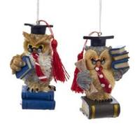 "Pack of 6 Wise Graduate Owl Christmas Ornaments 3"" - multi"