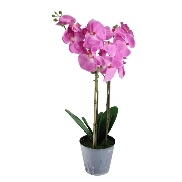Shop 20 potted pink phalaenopsis orchid artificial silk flower 20 potted pink phalaenopsis orchid artificial silk flower plant green mightylinksfo