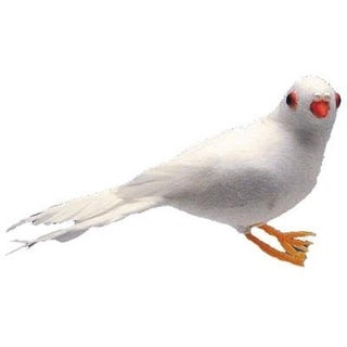 """AD Fthr Dove 4 1/4 """" White 1pc"""