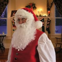 Santa Wig and Beard Set Adult Costume Accessory