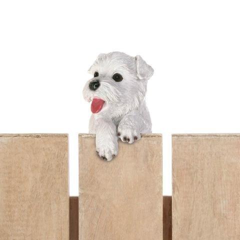 """Climbing Cutie White Terrier """"aspen"""" Pup"""