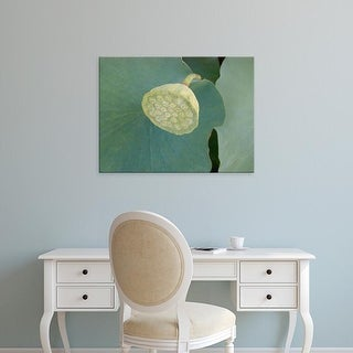 Easy Art Prints Jim Christensen's 'Lotus Detail VIII' Premium Canvas Art