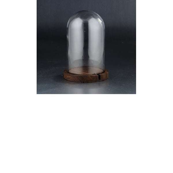 """10"""" Clear and Brown Glass Dome with Base Tabletop Decor - N/A"""