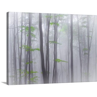 """Misty"" Canvas Wall Art"