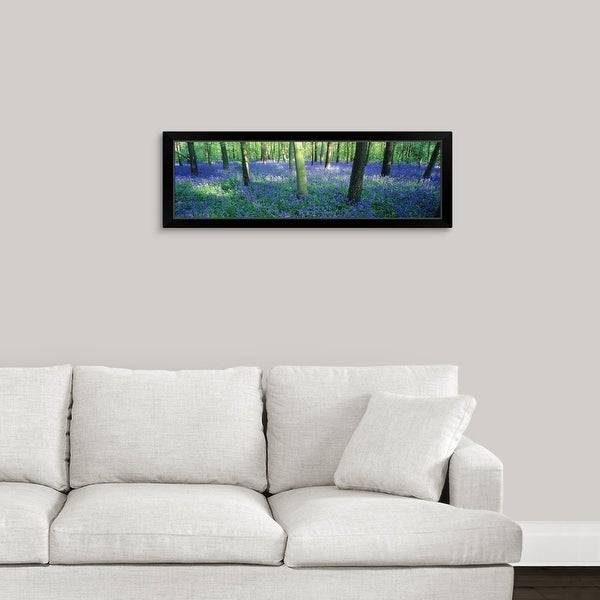 """""""Bluebells in a forest, Charfield, Gloucestershire, England"""" Black Framed Print"""
