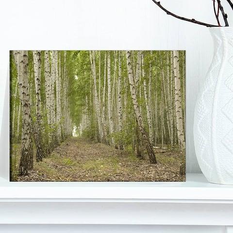 Designart 'Dense Birch Grove in Summer Day' Modern Forest Canvas Wall Artwork Print