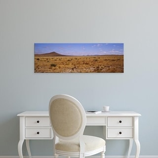 Easy Art Prints Panoramic Images's 'Dry grass and bush at Big Bend National Park, Texas, USA' Premium Canvas Art
