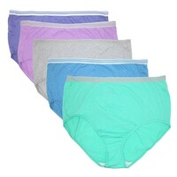 3ff4be019405 Fruit of the Loom Women's Plus Size Heathered Briefs Underwear (5 Pair ...