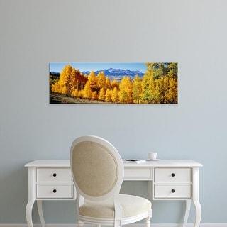 Easy Art Prints Panoramic Images's 'Fall Aspen Trees Telluride CO' Premium Canvas Art