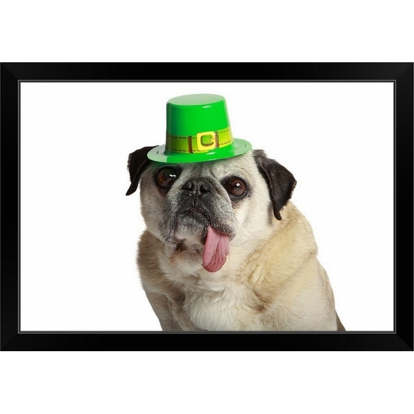 """""""Pug wearing a leprechaun hat with his tongue hanging"""" Black Framed Print"""