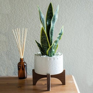 """Link to Mid-Century Modern Planter 5"""" Caveman Ceramic Planter on Wood Stand Similar Items in Planters, Hangers & Stands"""