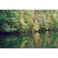 Pond And Trees Photograph Art Print
