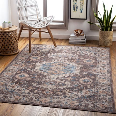 Jonette Indoor/ Outdoor Persian Area Rug