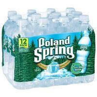 Poland Spring Water - Natural - Case of 2 - 0.5 Liter