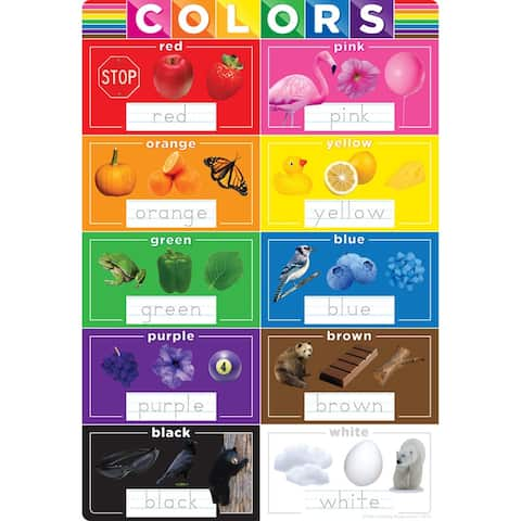 "Smart Poly® Chart Colors, 13"" x 19"""