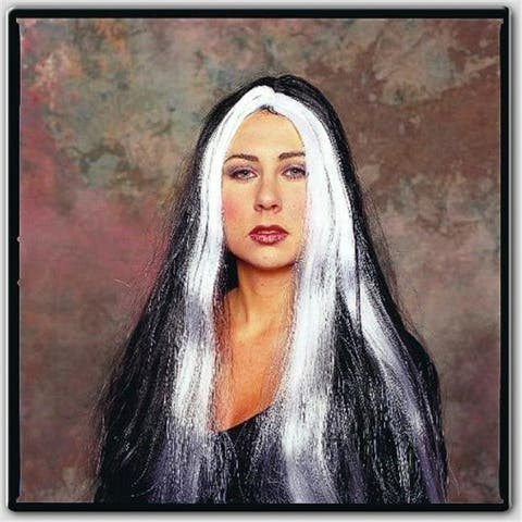RG Costumes 60006 Witch Wig With Grey Stripes - 24 Inches - Size Adult