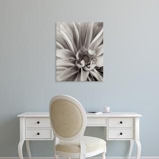 Easy Art Prints Alan Blaustein's 'Florison #21' Premium Canvas Art