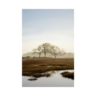 Easy Art Prints Alan Blaustein's 'Oak Tree #66' Premium Canvas Art