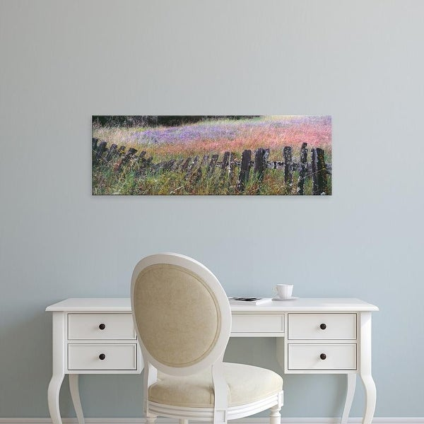 Easy Art Prints Panoramic Image 'Lupine field, Quail Hollow Ranch County Park, Felton, SantCruz, California' Canvas Art