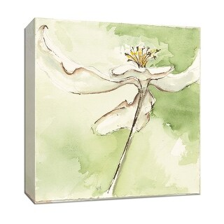 """PTM Images 9-153452  PTM Canvas Collection 12"""" x 12"""" - """"After Dogwood II"""" Giclee Dogwood Art Print on Canvas"""