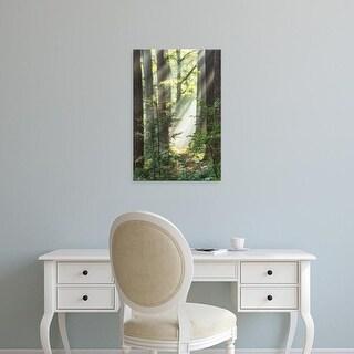 Easy Art Prints Lars Van de Goor's 'Sunbeam and Spiderweb' Premium Canvas Art