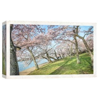 """PTM Images 9-103792  PTM Canvas Collection 8"""" x 10"""" - """"Cherry Blossoms 3"""" Giclee Forests Art Print on Canvas"""
