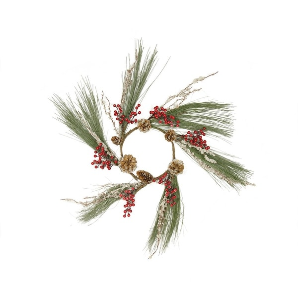 "20"" Rustic Red Berry and Frosted Pine Cone Artificial Christmas Wreath - Unlit - brown"