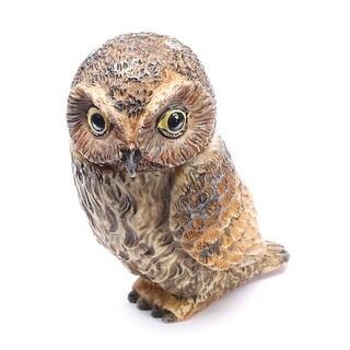 Owl Pot Bellys Box - Elf Owl