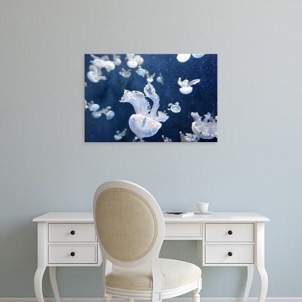 Easy Art Prints Keren Su's 'Emperor Penguin Chick On Ice' Premium Canvas Art
