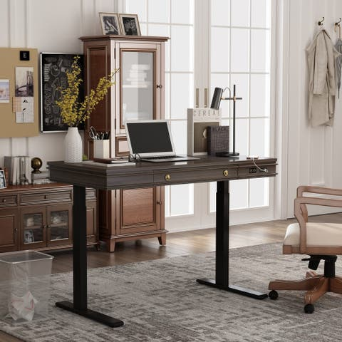 """FlexiSpot Home Office Electric Standing Desk 48""""x24"""" American Design Computer Desk With Storage Drawer, USB Ports"""