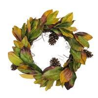 "24"" Decorative Artificial Autumn Magnolia Leaf and Pine Cone Wreath - Unlit - Brown"