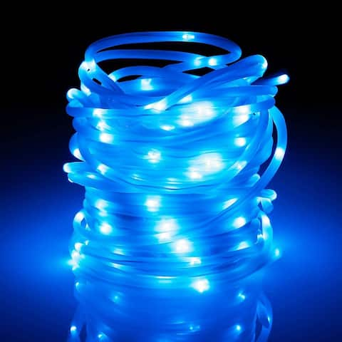 33ft 100LEDs Fairy String Lights with Remote Control,Blue