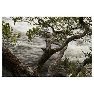 """""""River in flood"""" Poster Print"""