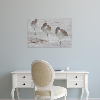 Easy Art Prints Jerry & Marcy Monkman's 'Willets' Premium Canvas Art