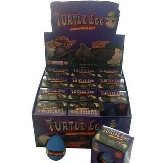 DDI 2186520 Turtle Hatch Em Eggs Case of 144
