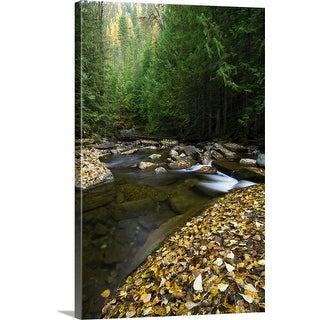 """Fallen autumn color leaves and forest along Ross Creek, Montana"" Canvas Wall Art"
