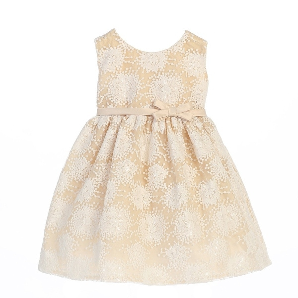 f0df40486dfb9 Shop Sweet Kids Baby Girls Champagne Flower Embroidered Special Occasion  Dress 6-24M - Free Shipping On Orders Over $45 - Overstock - 21158879