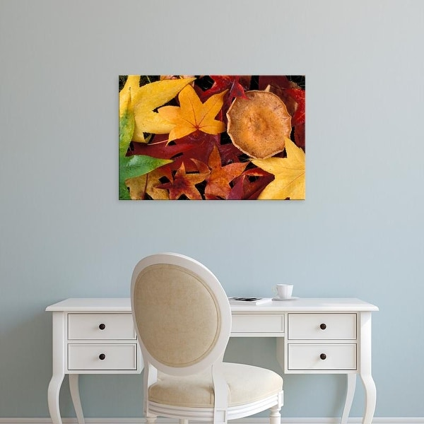 Easy Art Prints Michele Westmorland's 'Fall Leaves And Toadstool' Premium Canvas Art