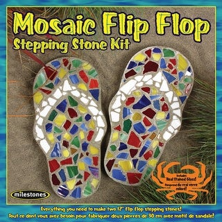 Mosiac Stepping Stone Kit