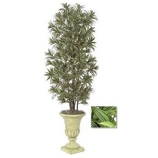 Autograph Foliages W-2756 - 7 Foot Dracaena Reflexa Tree - Green-White
