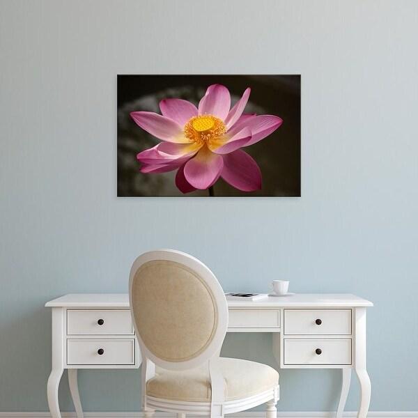 Easy Art Prints Alida Latham's 'Lotus Flower In Full Bloom Ii' Premium Canvas Art