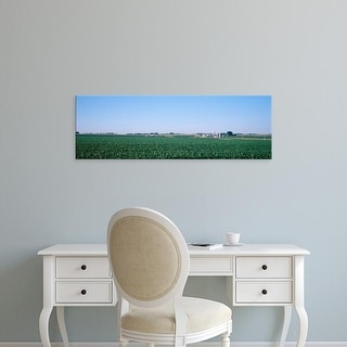 Easy Art Prints Panoramic Images's 'Soybean field Ogle Co IL USA' Premium Canvas Art