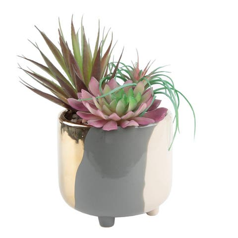 "Succulent Garden IN 4.8"" 3-TONE FOOTED CERAMIC POT,GREY - ONE-SIZE"