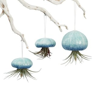 Hanging Air Plants with Planters - Set of 3 Ceramic Sea Urchins - 27 in. x 18 in.
