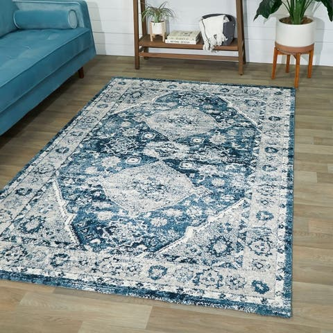 Dion Persian Medallion Area Rug