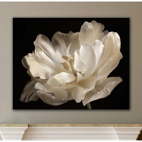 ArtWall Cora Niele 'White Tulip' Gallery Wrapped Canvas Wall Art